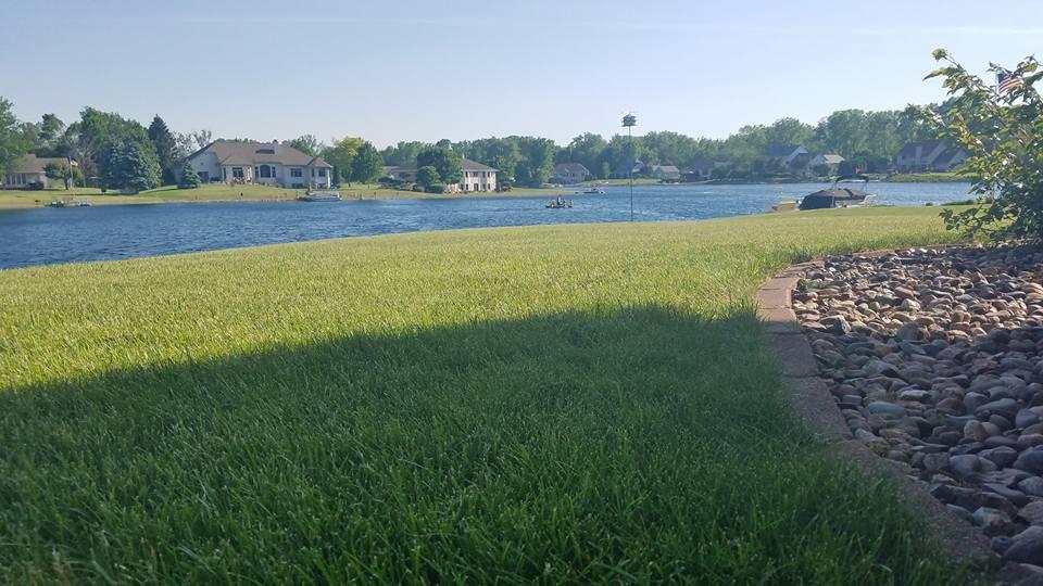 grass area near a lake